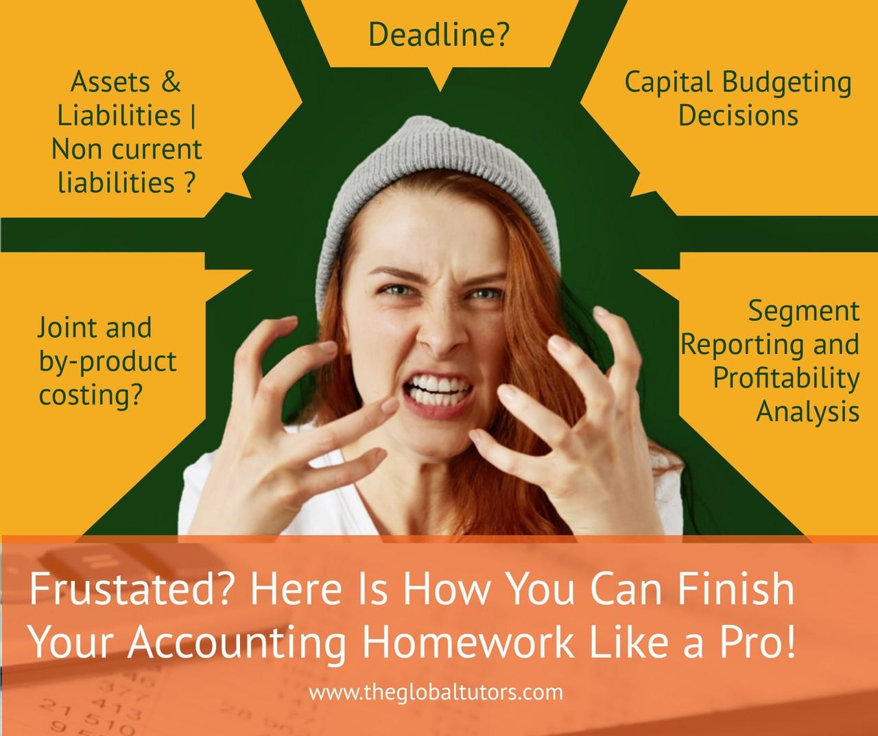 Accounting Homework Like a Pro